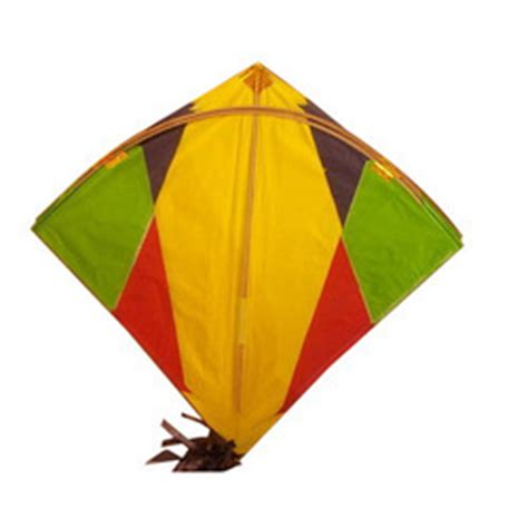 kite flying essay if i were a flying kite essay for children  words